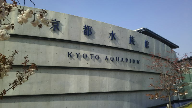 京都水族馆 / 京都松荣旅馆